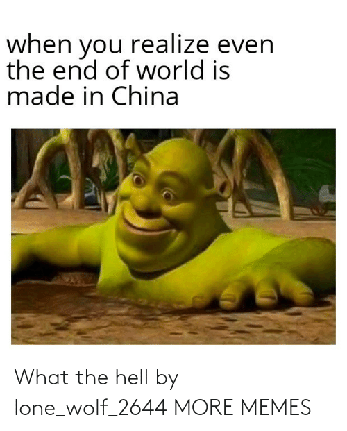 Hell: What the hell by lone_wolf_2644 MORE MEMES