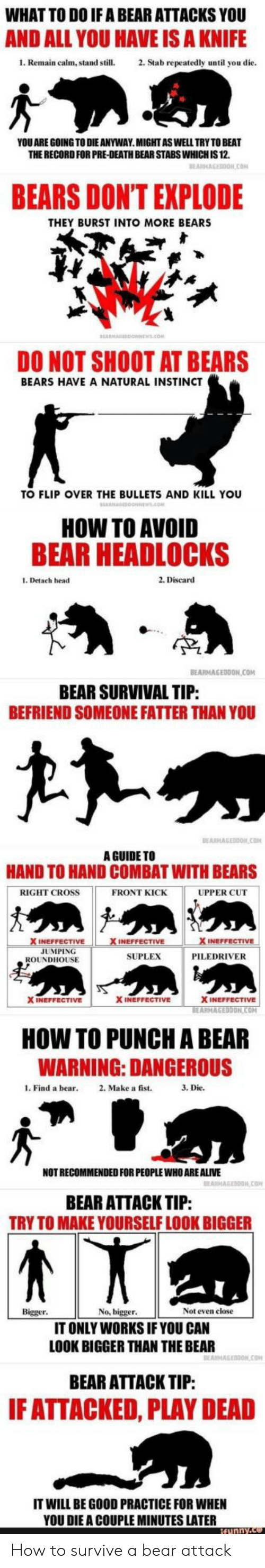roundhouse: WHAT TO DO IF A BEAR ATTACKS YOU  AND ALL YOU HAVE IS A KNIFE  1. Remain calm, stand still.2. Stab repeatedly until you die  YOU ARE GOING TO DIE ANYWAY.MIGHTASWELL TRY TO BEAT  THE RECORD FOR PRE-DEATH BEAR STABS WHICH IS 12.  BEARS DONT EXPLODE  THEY BURST INTO MORE BEARS  DO NOT SHOOT AT BEARS  BEARS HAVE A NATURAL INSTINCT  TO FLIP OVER THE BULLETS AND KILL YOU  HOW TO AVOID  BEAR HEADLOCKS  1. Detach head  2. Discard  TP  BEARMAGEDDON COM  BEAR SURVIVAL TIP  BEFRIEND SOMEONE FATTER THAN YOU  A GUIDE TO  HAND TO HAND COMBAT WITH BEARS  RIGHT CROSS  FRONT KICK  UPPER CUT  INEFFECTIVE  JUMPING  SUPLEX  PILEDRIVER  ROUNDHOUSE  X INEFFECTIVE  X INEFFECTIVE  ON  HOW TO PUNCH A BEAR  WARNING: DANGEROUS  l. Find a bear 2. Make a fist.  3. Die.  NOT RECOMMENDED FOR PEOPLE WHO ARE ALIVE  BEAR ATTACK TIP:  TRY TO MAKE YOURSELF LOOK BIGGER  Bigger  No, bigger  Not even close  IT ONLY WORKS IF YOU CAN  LOOK BIGGER THAN THE BEAR  BEAR ATTACK TIP:  F ATTACKED, PLAY DEAD  IT WILL BE GOOD PRACTICE FOR WHEN  YOU DIE A COUPLE MINUTES LATER How to survive a bear attack
