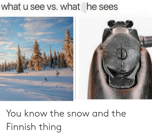 Snow, What U, and Thing: what u see vs. what he sees You know the snow and the Finnish thing