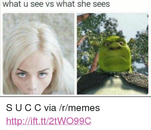 "What U See Vs What She Sees: what u see vs what she sees <p>S U C C via /r/memes <a href=""http://ift.tt/2tWO99C"">http://ift.tt/2tWO99C</a></p>"
