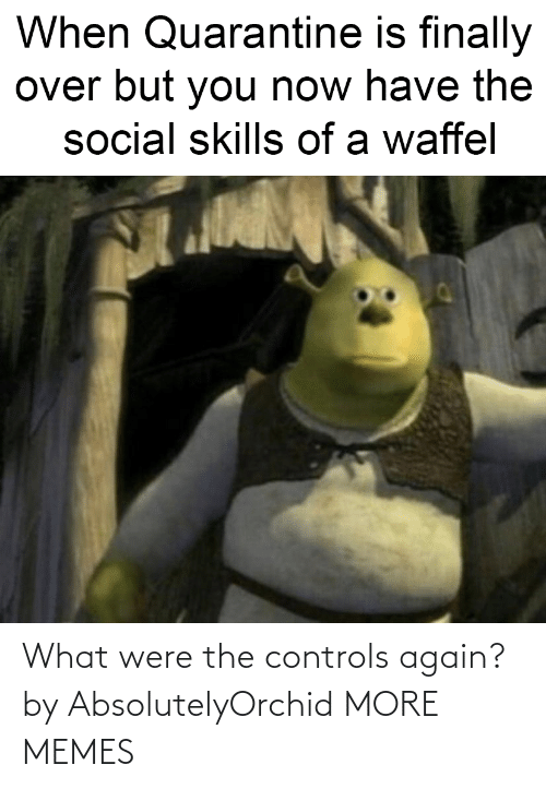 dank: What were the controls again? by AbsolutelyOrchid MORE MEMES