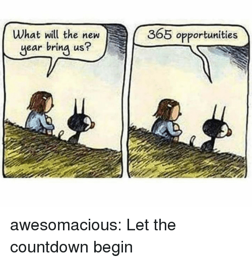 Countdown: What will the new  year bring us?  365 opportunities awesomacious:  Let the countdown begin