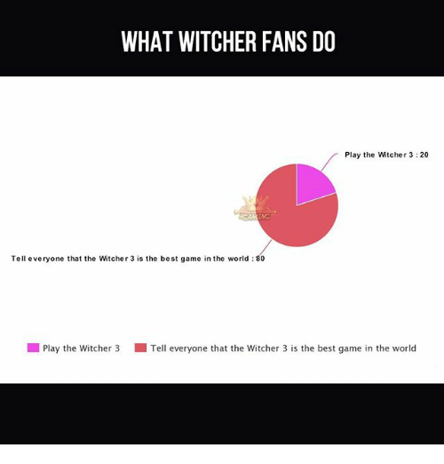 The Best Games: WHAT WITCHER FANS DO  Play the Witcher 3:20  Tell everyone that the Witcher 3 is the best game in the world 80  l Play the witcher 3 Tell everyone that the witcher 3 is the best game in the world