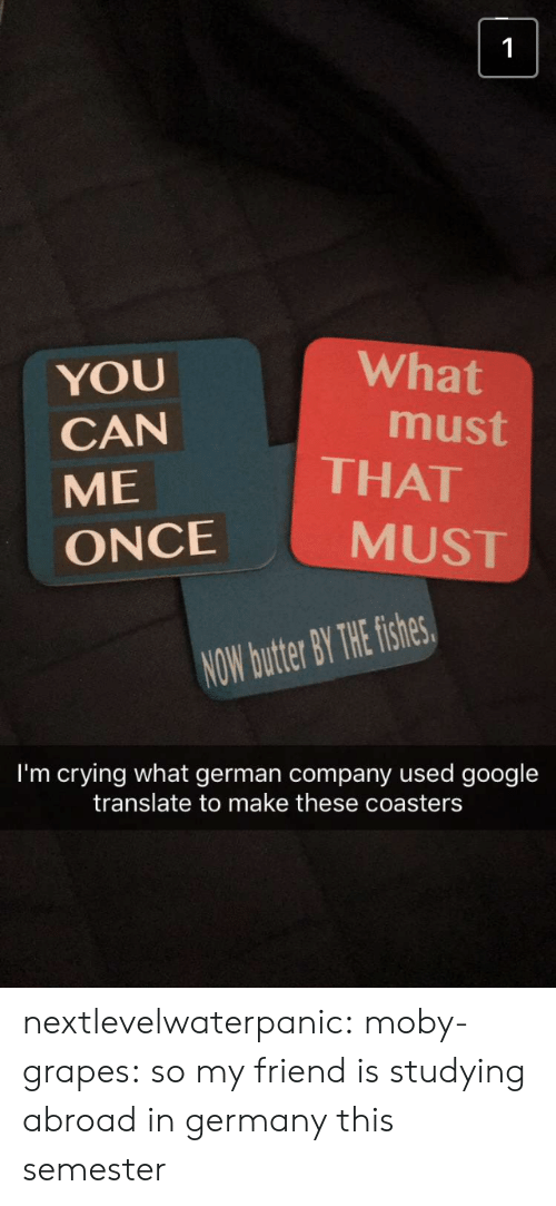 Crying, Google, and Tumblr: What  YOU  CAN  ME  ONCE  must  THAT  MUST  NOW butter BY THE fishes  I'm crying what german company used google  translate to make these coasters nextlevelwaterpanic:  moby-grapes: so my friend is studying abroad in germany this semester