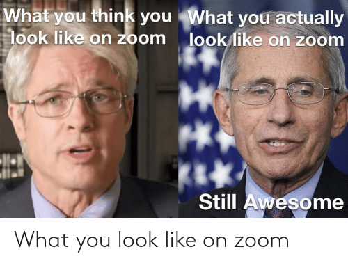 What You: What you look like on zoom