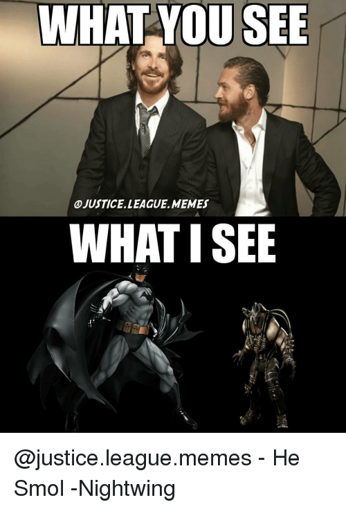 Justice League Meme: WHAT YOU SEE  OJUSTICE LEAGUE, MEMES  WHAT ISEE @justice.league.memes - He Smol -Nightwing