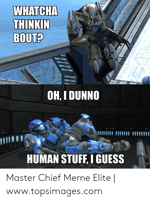 Meme, Guess, and Stuff: WHATCHA  THINKIN  BOUT?  OH, I DUNNO  HUMAN STUFF, I GUESS Master Chief Meme Elite | www.topsimages.com