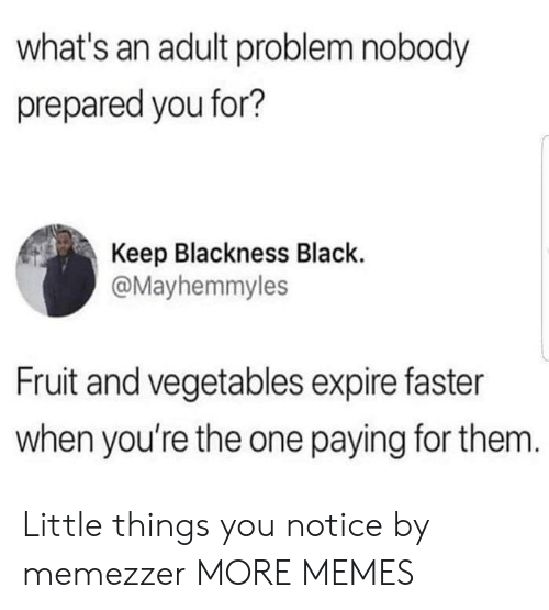 little things: what's an adult problem nobody  prepared you for?  Keep Blackness Black  @Mayhemmyles  Fruit and vegetables expire faster  when you're the one paying for them. Little things you notice by memezzer MORE MEMES
