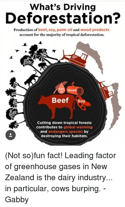 the dairy industry and its contributions to global warming Dig deeper to learn more about the ways agriculture impacts global warming positive impacts effectively negating the agricultural industry's humongous carbon.