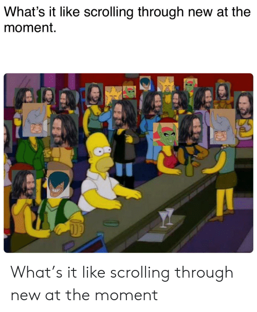 Moment, New, and What: What's it like scrolling through new at the  moment. What's it like scrolling through new at the moment