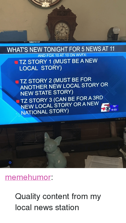 """News, Tumblr, and Blog: WHAT'S NEW TONIGHT FOR 5 NEWS AT 11  AND FOX 10 AT 10 ON WVFX  TZ STORY 1 (MUST BE A NEW  LOCAL STORY)  TZ STORY 2 (MUST BE FOR  ANOTHER NEW LOCAL STORY OR  NEW STATE STORY)  TZ STORY 3 (CAN BE FOR A 3RD  NEW LOCAL STORY OR A NEW  NATIONAL STORY)  76°  6:03  SANYO <p><a href=""""http://memehumor.net/post/173718303348/quality-content-from-my-local-news-station"""" class=""""tumblr_blog"""">memehumor</a>:</p>  <blockquote><p>Quality content from my local news station</p></blockquote>"""
