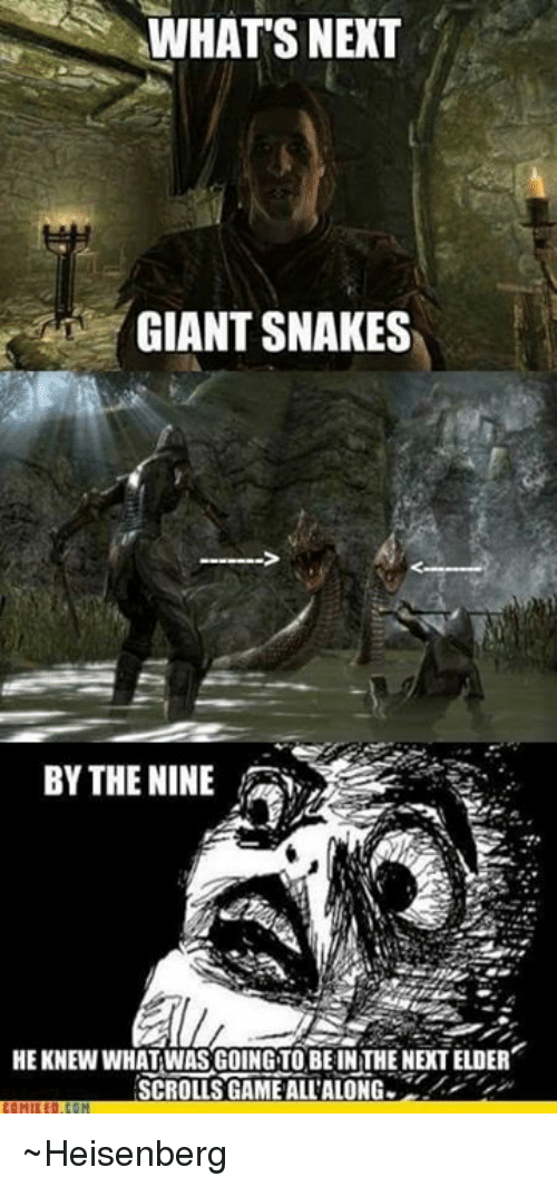 heisenberg: WHATS NEXT  GIANT SNAKES  BY THE NINE  HEKNEW WHAT WAS GOING TO BE IN THE NEXT ELDER  SCROLLS GAME ALL'ALONG ~Heisenberg