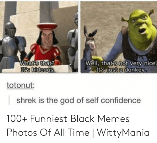 Confidence, Donkey, and God: What's that?  It's hideous  Well, that's not very nice.  It'sjust a donkey.  totonut:  shrek is the god of self confidence 100+ Funniest Black Memes Photos Of All Time | WittyMania