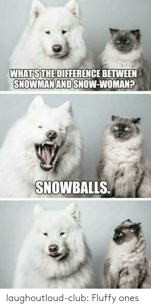 Club, Tumblr, and Blog: WHATS THE DIFFERENCE BETWEEN  SNOWMAN AND SNOW-WOMAN?  SNOWBALLS laughoutloud-club:  Fluffy ones