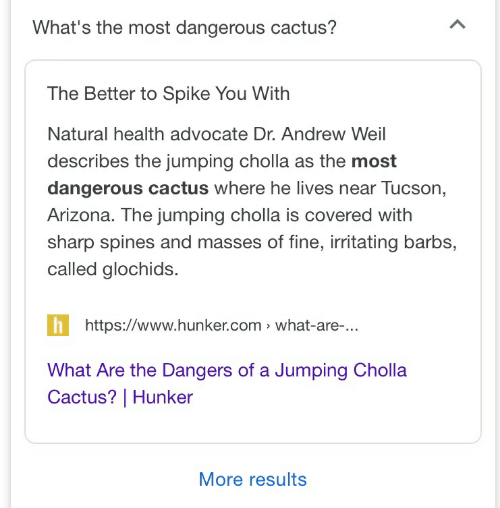 tucson arizona: What's the most dangerous cactus?  The Better to Spike You With  Natural health advocate Dr. Andrew Weil  describes the jumping cholla as the most  dangerous cactus where he lives near Tucson,  Arizona. The jumping cholla is covered with  sharp spines and masses of fine, irritating barbs,  called glochids.  https://www.hunker.com what-are-...  What Are the Dangers of a Jumping Cholla  Cactus?   Hunker  More results  <