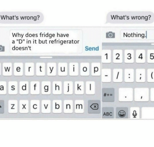 """Whats Wrong Nothing: What's wrong?  What's wrong?  Nothing  Why does fridge have  a """"D"""" in it but refrigerator  doesn't  Send  12 3 4 5  w e r ty u o p  a  s d f g hj k I  ABC"""