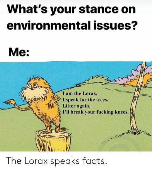 Facts, Fucking, and Break: What's your stance on  environmental issues?  Me:  I am the Lorax,  I speak for the trees.  Litter again,  I'll break your fucking knees. The Lorax speaks facts.