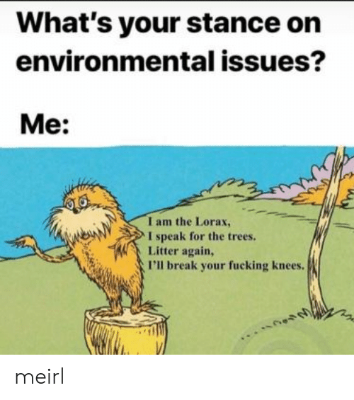 lorax: What's your stance on  environmental issues?  Me:  I am the Lorax,  I speak for the trees.  Litter again,  I'll break your fucking knees. meirl