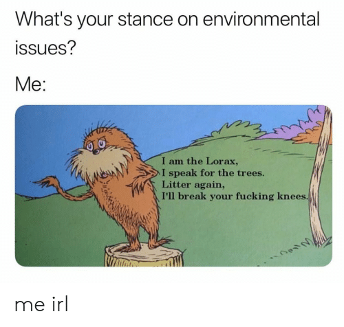 lorax: What's your stance on environmental  ssues?  Me:  I am the Lorax,  I speak for the trees.  Litter again,  I'll break your fucking knees me irl