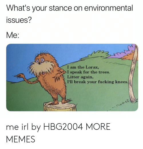lorax: What's your stance on environmental  ssues?  Me:  I am the Lorax,  I speak for the trees.  Litter again,  I'll break your fucking knees me irl by HBG2004 MORE MEMES