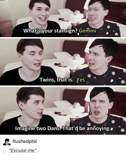 """Memes, Twins, and Gemini: Whats your star sign? Gemini  Twins, that is. Yes  Imagine two Dans.That'd be anñoying.o  flushedphil  """"Excuse me"""""""