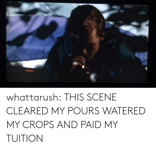 Tumblr, Blog, and Http: whattarush:  THIS SCENE CLEARED MY POURS WATERED MY CROPS AND PAID MY TUITION
