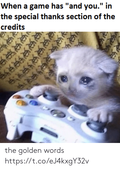"""Credits: When a game has """"and you."""" in  the special thanks section of the  credits  ी  र  జులుల the golden words https://t.co/eJ4kxgY32v"""