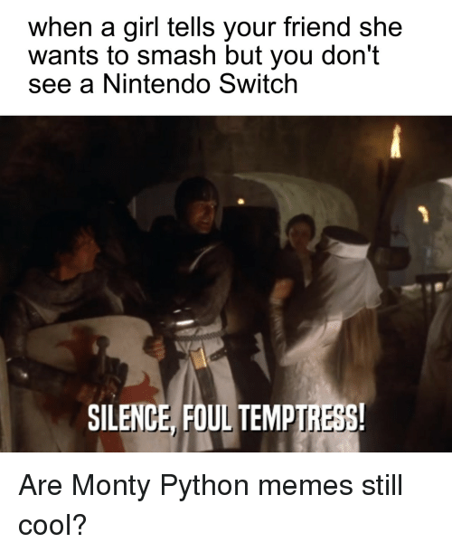 Memes, Nintendo, and Smashing: when a girl tells your friend she  wants to smash but you don't  see a Nintendo Switch  SILENCE, FOUL TEMPIRESS Are Monty Python memes still cool?