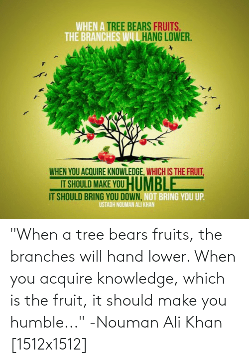 "acquire: ""When a tree bears fruits, the branches will hand lower. When you acquire knowledge, which is the fruit, it should make you humble..."" -Nouman Ali Khan [1512x1512]"