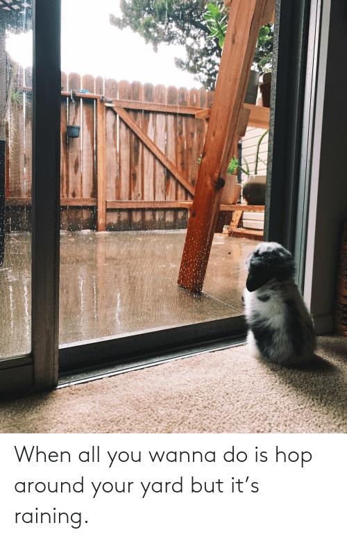 Wanna Do: When all you wanna do is hop around your yard but it's raining.