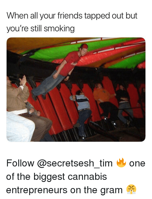 Tapped: When all your friends tapped out but  you're still smoking Follow @secretsesh_tim 🔥 one of the biggest cannabis entrepreneurs on the gram 😤