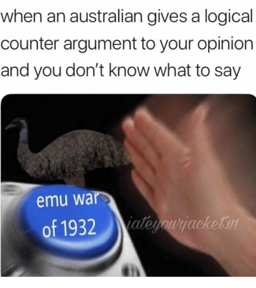 Australian, War, and Emu: when an australian gives a logical  counter argument to your opinion  and you don't know what to say  emu war  of 1932aleyoujacketor