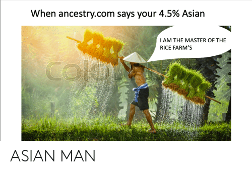 Asian, Ancestry, and Dank Memes: When ancestry.com says your 4.5% Asian  I AM THE MASTER OF THE  RICE FARM'S  cole ASIAN MAN