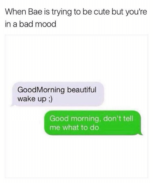 Bad, Bae, and Beautiful: When Bae is trying to be cute but you're  in a bad mood  GoodMorning beautiful  wake up;  Good morning, don't tell  me what to do