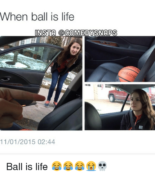 When Ball Is Life: When ball is life  INSTA COMEDYSSNAPS  11/01/2015 02:44 Ball is life 😂😂😂😭💀