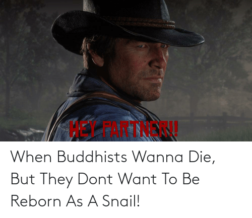reborn: When Buddhists Wanna Die, But They Dont Want To Be Reborn As A Snail!