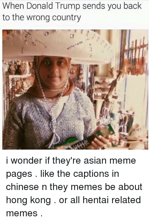 Asian, Donald Trump, and Memes: When Donald Trump sends you back  to the wrong country i wonder if they're asian meme pages . like the captions in chinese n they memes be about hong kong . or all hentai related memes .