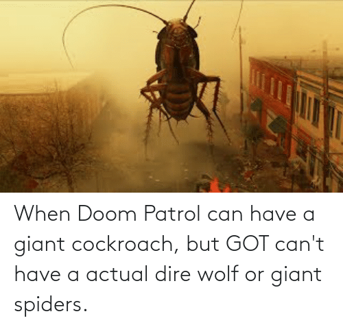 dire wolf: When Doom Patrol can have a giant cockroach, but GOT can't have a actual dire wolf or giant spiders.