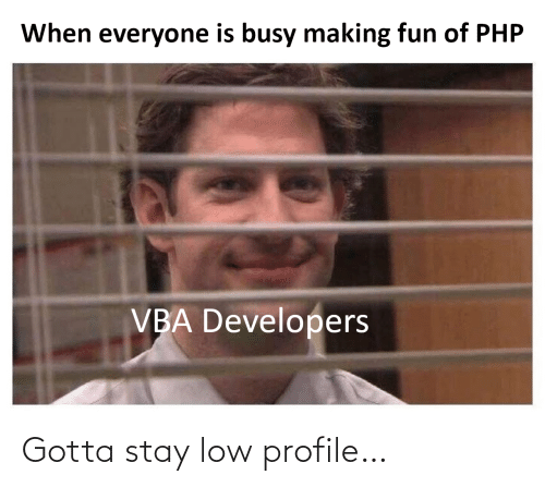 making fun: When everyone is busy making fun of PHP  VBA Developers Gotta stay low profile…