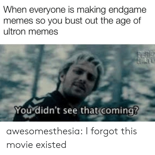 Memes, Tumblr, and Blog: When everyone is making endgame  memes so you bust out the age of  ultron memes  You didn't see that coming? awesomesthesia:  I forgot this movie existed