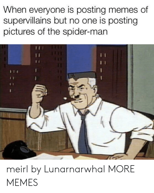 Dank, Memes, and Spider: When everyone is posting memes of  supervillains but no one is posting  pictures of the spider-man meirl by Lunarnarwhal MORE MEMES