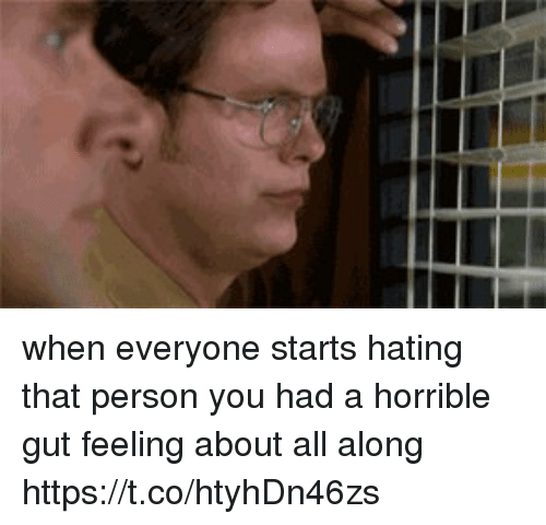 Memes, 🤖, and All: when everyone starts hating that person you had a horrible gut feeling about all along https://t.co/htyhDn46zs