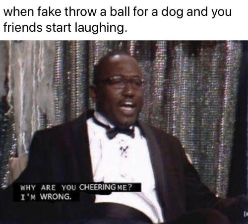 cheering: when fake throw a ball for a dog and you  friends start laughing.  WHY ARE YOU CHEERING ME?  I'M WRONG.