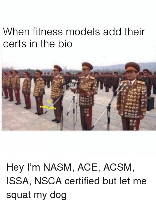 issa: When fitness models add their  certs in the bio  8G  Othegainz  2 Hey I'm NASM, ACE, ACSM, ISSA, NSCA certified but let me squat my dog