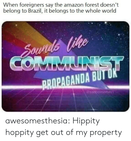 amazon forest: When foreigners say the amazon forest doesn't  belong to Brazil, it belongs to the whole worlod  ge  ROPAGANDA B awesomesthesia:  Hippity hoppity get out of my property