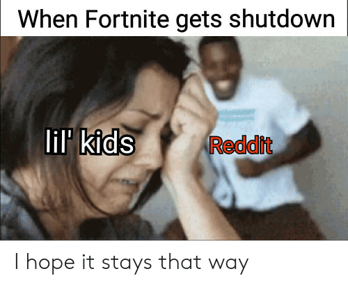 Reddit, Kids, and Hope: When Fortnite gets shutdown  lil kids  Reddit I hope it stays that way