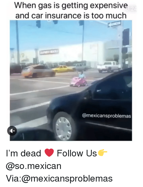 car insurance: When gas is getting expensive  and car insurance is too much  @mexicansproblemas I'm dead ❤️ Follow Us👉 @so.mexican Via:@mexicansproblemas