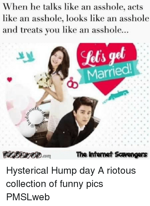 Funny, Hump Day, and Day: When he talks like an asshole, acts  like an asshole, looks like an asshole  and treats you like an asshole.  Married  The htemet Scavengers <p>Hysterical Hump day  A riotous collection of funny pics  PMSLweb </p>