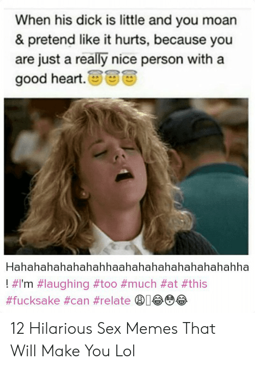 Hilarious Sex Memes: When his dick is little and you moan  & pretend like it hurts, because you  are just a really nice person with a  good heart.  Hahahahahahahahhaahahahahahahahahahha  ! 12 Hilarious Sex Memes That Will Make You Lol