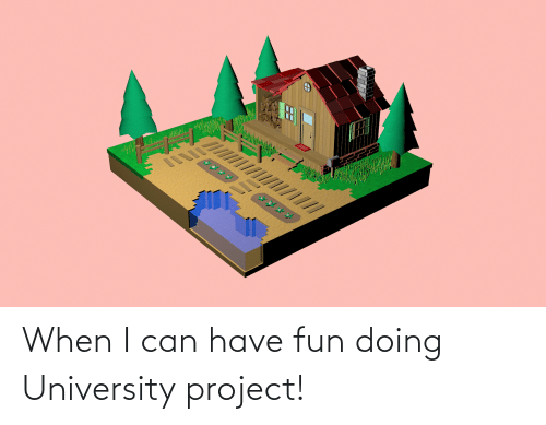university: When I can have fun doing University project!